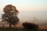 jesen v chotari